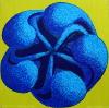 Blå akleja